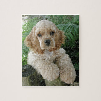 American Cocker Spaniel Dog And The Green Fern Jigsaw Puzzle