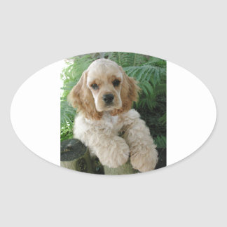 American Cocker Spaniel Dog And The Green Fern Oval Sticker