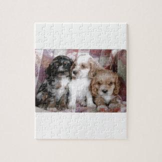 American Cocker Spaniel Puppies Jigsaw Puzzle