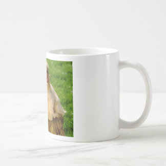 American Cocker Spaniel Puppies On A Stump Coffee Mug