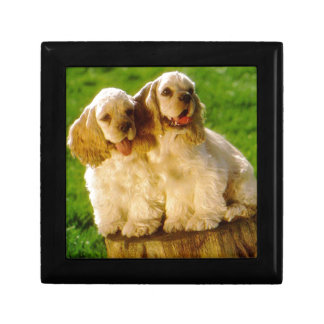 American Cocker Spaniel Puppies On A Stump Gift Box