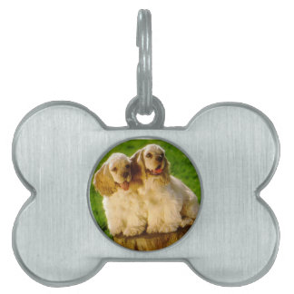 American Cocker Spaniel Puppies On A Stump Pet Name Tags