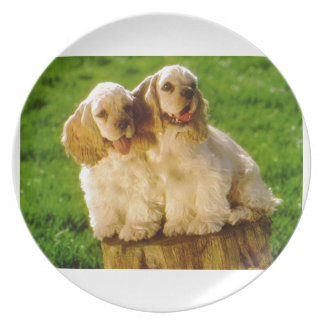 American Cocker Spaniel Puppies On A Stump Plate