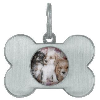 American Cocker Spaniel Puppies Pet Tag