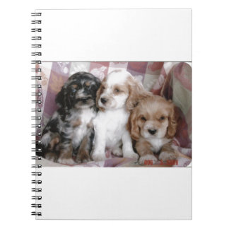 American Cocker Spaniel Puppies Spiral Notebook