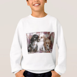 American Cocker Spaniel Puppies Sweatshirt