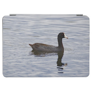 American Coot Reflecting Tablet Cover iPad Air Cover