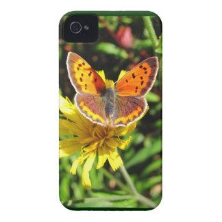 American Copper ~ BlackBerry Bold CaseMate Barely iPhone 4 Case-Mate Case