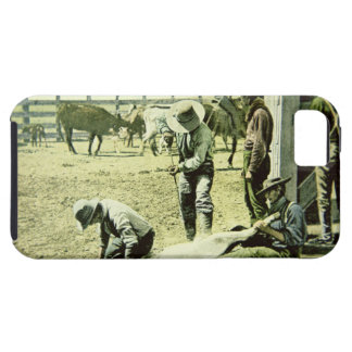 American cowboys branding a calf, c.1900 (photo) tough iPhone 5 case