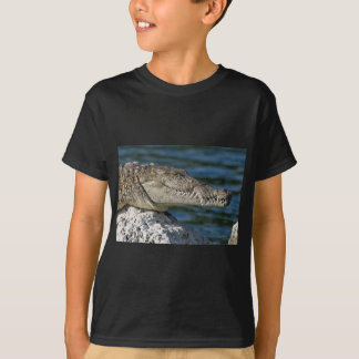American Crocodile T Shirts