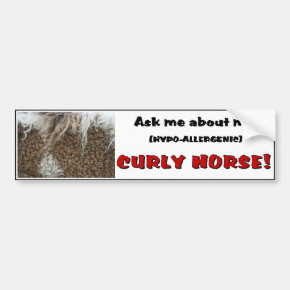 American Curly Horse Bumper Sticker