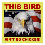 American Eagle Ain't No Chicken Poster Sign