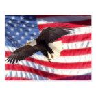 American Eagle and Flag Postcard