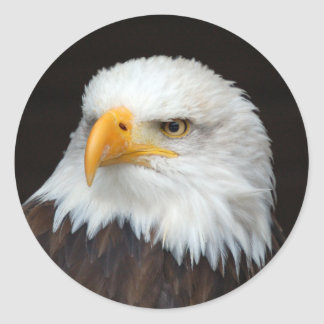 AMERICAN EAGLE by Jean Louis Glineur Classic Round Sticker