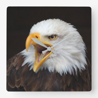 AMERICAN EAGLE - by Jean Louis Glineur Square Wall Clock