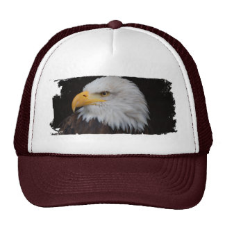 AMERICAN EAGLE Cap - BY Jean Louis Glineur