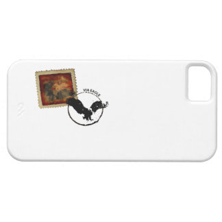 american eagle iphone case barely there iPhone 5 case