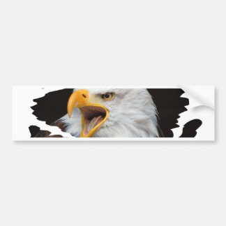 AMERICAN EAGLE - Jean Louis Glineur Photography Bumper Sticker