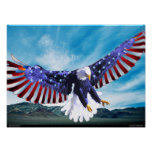 American Eagle Posters