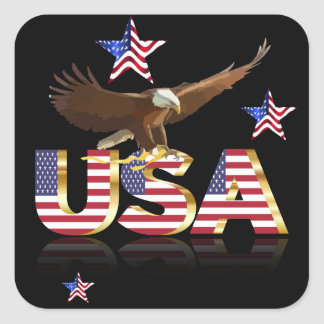 American eagle square sticker