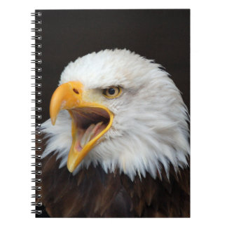 AMERICAN EAGLE - WEIS HEAD SEA-EAGLES by Glineur Spiral Notebook