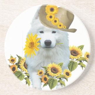 American Eskimo Daisy Drink Coaster