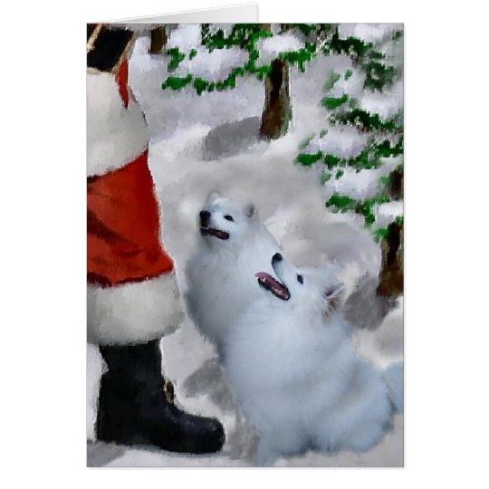 American Eskimo Dog Christmas Card