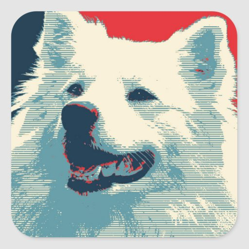 American Eskimo Dog Political Hope Parody Square Stickers