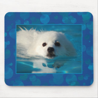 American Eskimo Dog Swimming Mouse Pad
