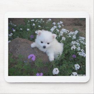 American Eskimo Puppy Dog Mouse Pad