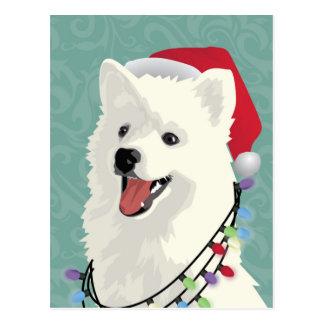 American Eskimo Samoyed Cute Puppy Dog Christmas Postcard