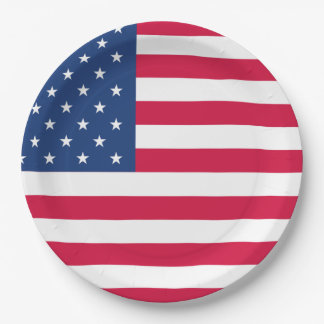 American Flag | 4th of July Paper Plate