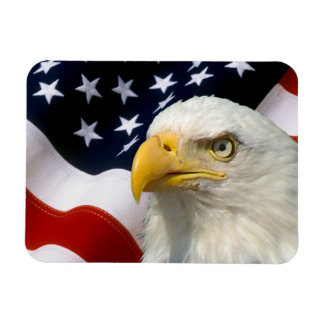 American Flag Eagle-5 Flexible Magnets