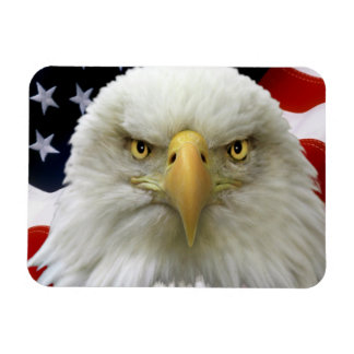 American Flag Eagle-7 Flexible Magnets
