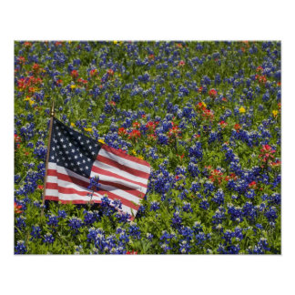 American Flag in field of Blue Bonnets, 2 Poster