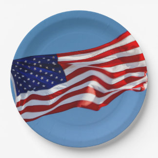 American Flag in the Wind Paper Plate