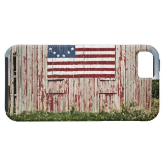 American flag painted on barn iPhone 5 cases