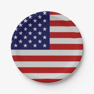 American Flag Paper Plate 7 Inch Paper Plate