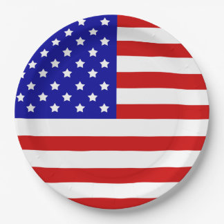 American Flag Patriotism Independence Day July 4 Paper Plate