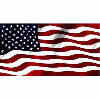 American Flag Photo Sculpture Badge