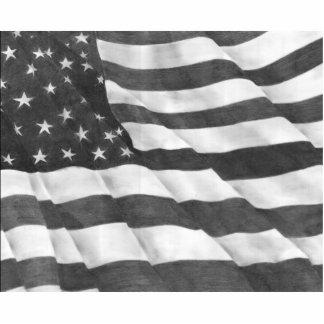 American Flag Photo Sculpture