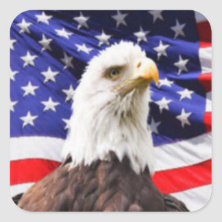 American Flag with Eagle Square Sticker