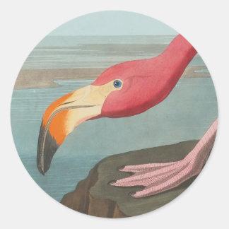 American Flamingo by John James Audubon 1838 Classic Round Sticker