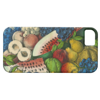 American Fruit 1857 iPhone 5 Cover
