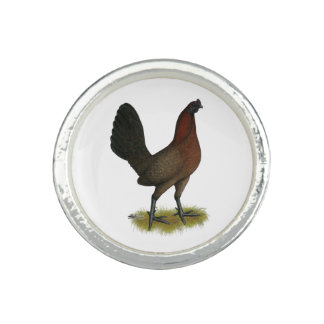 American Game Black Red Hen