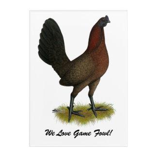 American Game Black Red Hen Acrylic Wall Art