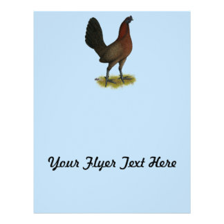 American Game Black Red Hen Flyer