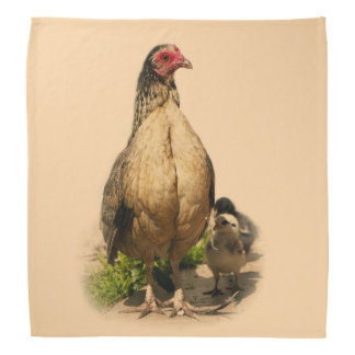 American Game Hen and Baby Chickens Bandana