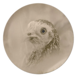 American Game Hen Plate