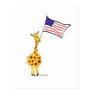 American Giraffe Postcards